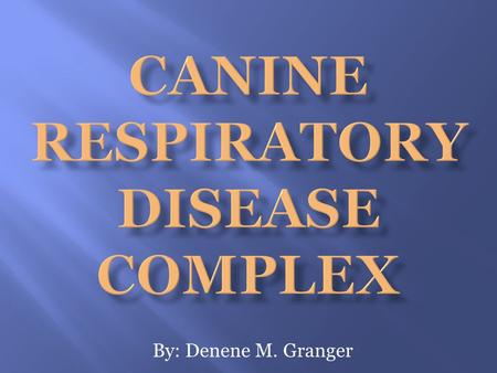 By: Denene M. Granger. Canine Respiratory Disease Complex There are several different ways dogs can acquire a respiratory disease, including the following: