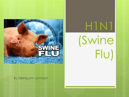 H1N1 (Swine Flu) By SierraLynn Johnson. Description of H1N1  H1N1 (Swine Flu) is a respiratory illness found in pigs or an infection cause by a virus.