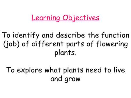 Learning Objectives To identify and describe the function (job) of different parts of flowering plants. To explore what plants need to live and grow.