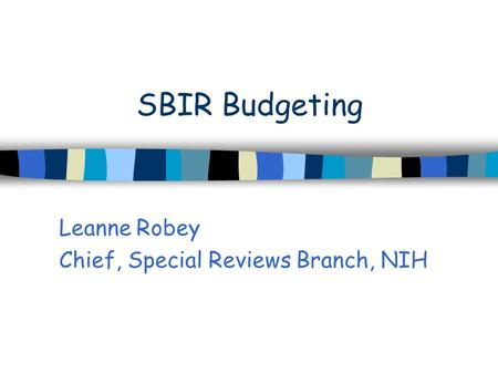 SBIR Budgeting Leanne Robey Chief, Special Reviews Branch, NIH.