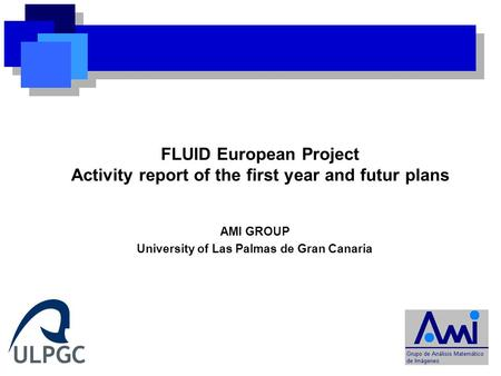 AMI GROUP University of Las Palmas de Gran Canaria FLUID European Project Activity report of the first year and futur plans.