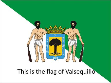 This is the flag of Valsequillo. Town Hall This is the town hall in the center of the town just behind the church. Front of the Town Hall are some flags.