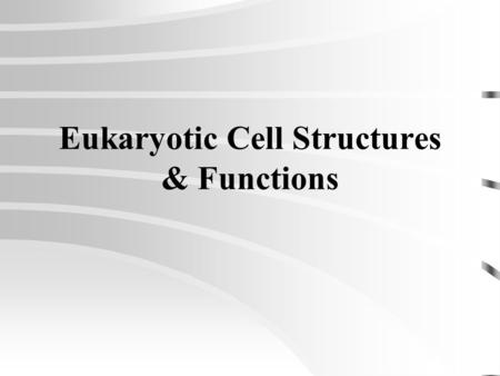 Eukaryotic Cell Structures & Functions An Organelle Is: A minute structure within a plant or animal cell that has a particular job or function.
