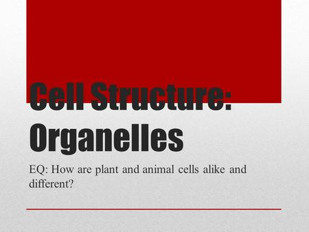 Cell Structure: Organelles EQ: How are plant and animal cells alike and different?