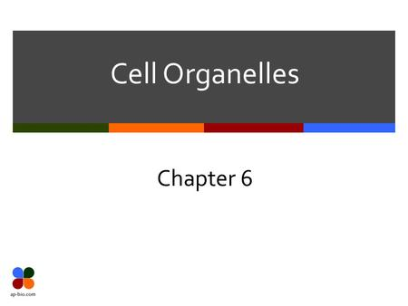 Cell Organelles Chapter 6. Slide 2 of 28 Nucleus 1.2.3. 4. 5. 6.