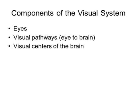 Components of the Visual System Eyes Visual pathways (eye to brain) Visual centers of the brain.