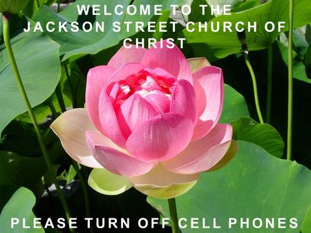 WELCOME TO THE JACKSON STREET CHURCH OF CHRIST PLEASE TURN OFF CELL PHONES.