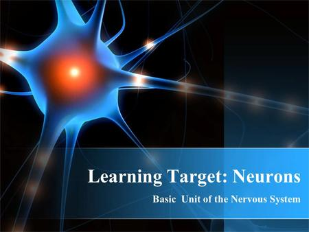 Learning Target: Neurons Basic Unit of the Nervous System.