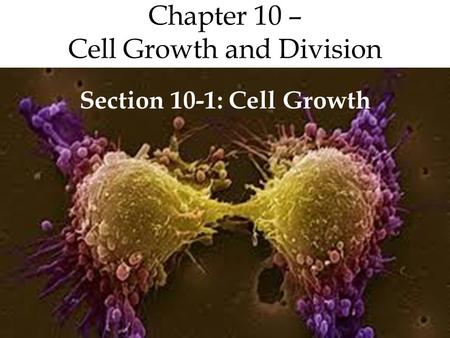 Chapter 10 – Cell Growth and Division Section 10-1: Cell Growth.
