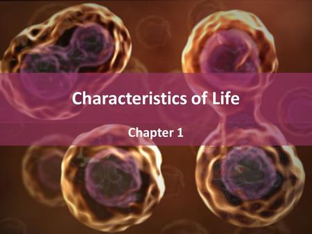 Characteristics of Life Chapter 1. Characteristics of Life 1.Living things are organized. – Made of cells?
