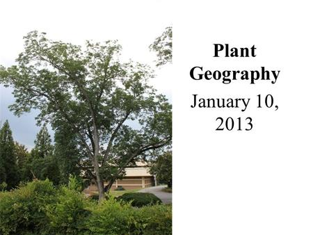 Plant Geography January 10, 2013. Ecosystems and Biogeography Biogeography – Examines the geographical distributions of organisms, their habitats, and.