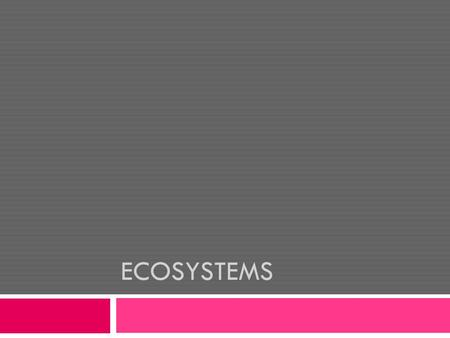 ECOSYSTEMS. What is an Ecosystem?  An ecosystem is interactions between living and non-living things within a given area.