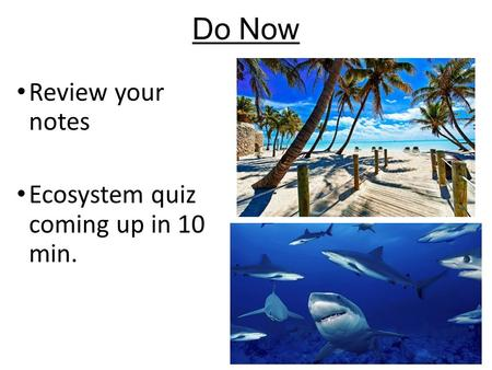 Do Now Review your notes Ecosystem quiz coming up in 10 min.