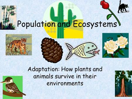Population and Ecosystems Adaptation: How plants and animals survive in their environments.