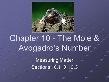 Chapter 10 - The Mole & Avogadro's Number Measuring Matter Sections 10.1  10.3.
