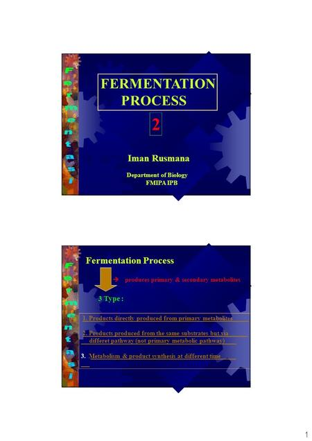 1 FERMENTATION PROCESS Iman Rusmana Department of Biology FMIPA IPB 2 Fermentation Process  produces primary & secondary metabolites 3 Type : 1. Products.