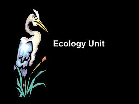 Ecology Unit. <strong>Definition</strong> of Ecology Ecology- the scientific study of interactions between organisms <strong>and</strong> their environments.