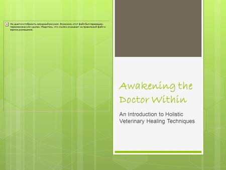 Awakening the Doctor Within An Introduction to Holistic Veterinary Healing Techniques.