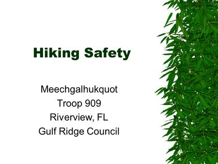 Hiking Safety Meechgalhukquot Troop 909 Riverview, FL Gulf Ridge Council.