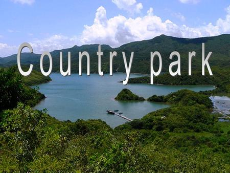 Background 23 country parks and 6 special areas occupy about 40% of the land area of Hong Kong.