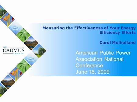 Measuring the Effectiveness of Your Energy Efficiency Efforts Carol Mulholland American Public Power Association National Conference June 16, 2009.