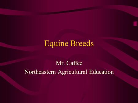 Equine Breeds Mr. Caffee Northeastern Agricultural Education.