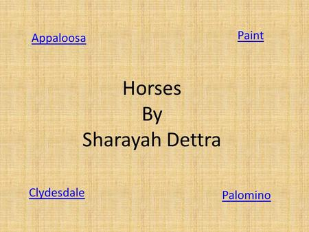 Horses By Sharayah Dettra Appaloosa Paint Clydesdale Palomino.