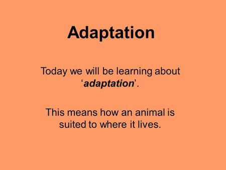 Adaptation Today we will be learning about 'adaptation'. This means how an animal is suited to where it lives.