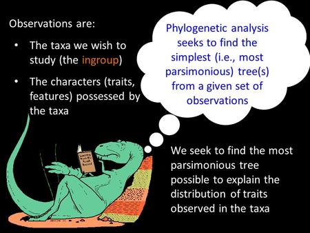 Phylogenetic analysis seeks to find the simplest (i.e., most parsimonious) tree(s) from a given set of observations Observations are: The taxa we wish.