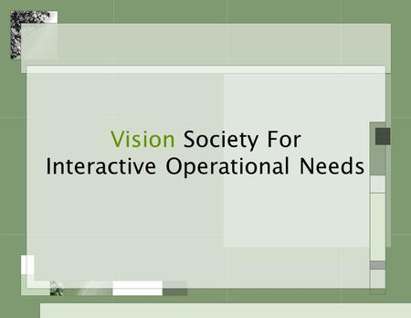 Vision Society For Interactive Operational Needs.
