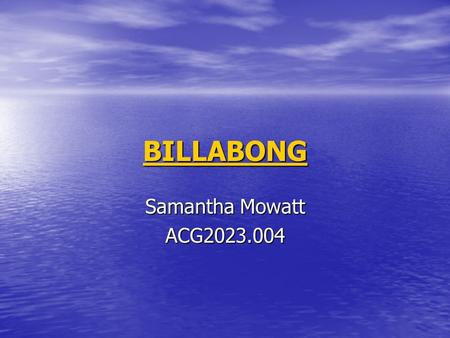 BILLABONG Samantha Mowatt ACG2023.004. Executive Summary Over the past year there has been an overall increase in Billabong industries with record highs.