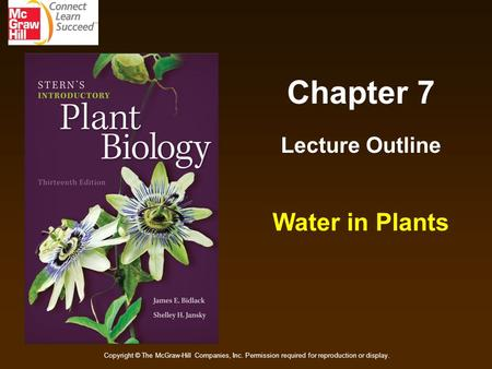 Chapter 7 Lecture Outline Water in Plants Copyright © The McGraw-Hill Companies, Inc. Permission required for reproduction or display.