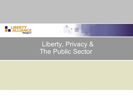 Liberty, Privacy & The Public Sector. 2 Agenda  Liberty & Privacy  E-government and identity  The promise of e-government  Importance of identity.