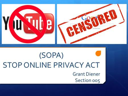 (SOPA) STOP ONLINE PRIVACY ACT Grant Diener Section 005.