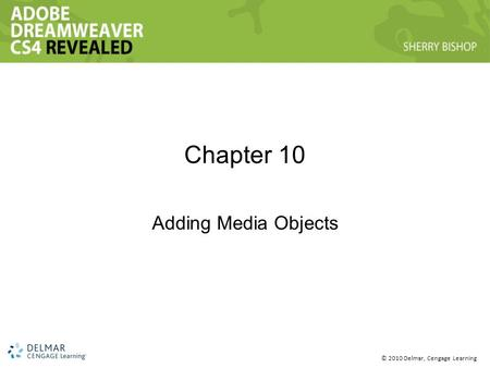 © 2010 Delmar, Cengage Learning Chapter 10 Adding Media Objects.