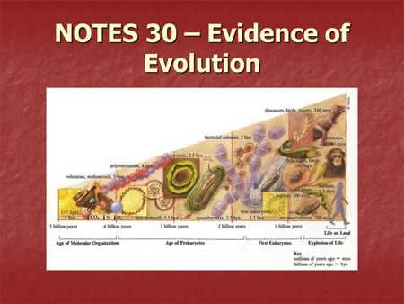 NOTES 30 – Evidence of Evolution. How is the theory of evolution supported? 1.Evidence that shows species have changed over time  Proves that species.