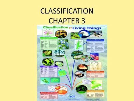 CLASSIFICATION CHAPTER 3