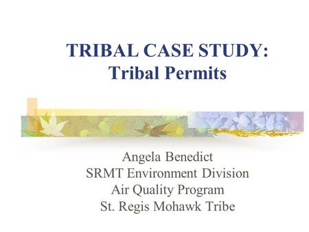 TRIBAL CASE STUDY: Tribal Permits Angela Benedict SRMT Environment Division Air Quality Program St. Regis Mohawk Tribe.