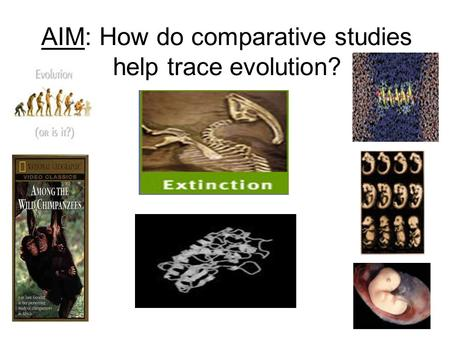 AIM: How do comparative studies help trace evolution?