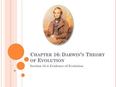 C HAPTER 16: D ARWIN ' S T HEORY OF E VOLUTION Section 16-4: Evidence of Evolution.