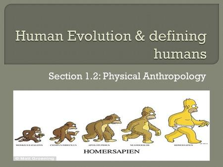 Section 1.2: Physical Anthropology.  https://www.youtube.com/watch?v=faRlF sYmkeY ​ https://www.youtube.com/watch?v=faRlF sYmkeY.