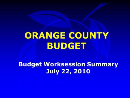 ORANGE COUNTY BUDGET Budget Worksession Summary July 22, 2010.