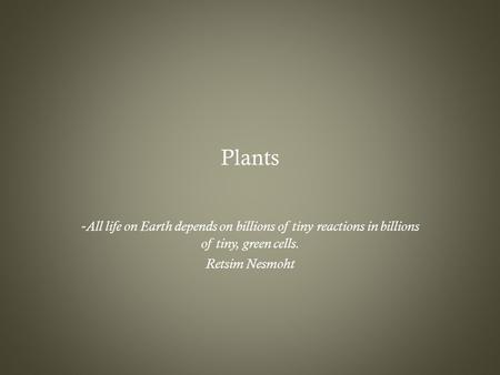 Plants - All life on Earth depends on billions of tiny reactions in billions of tiny, green cells. Retsim Nesmoht.