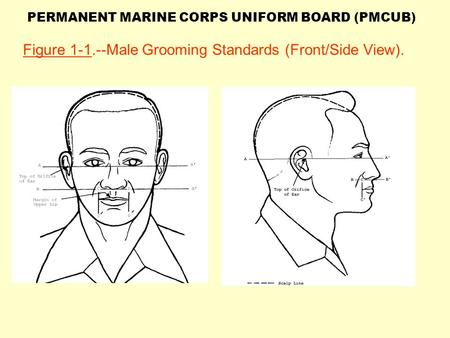 Figure Male Grooming Standards (Front/Side View).