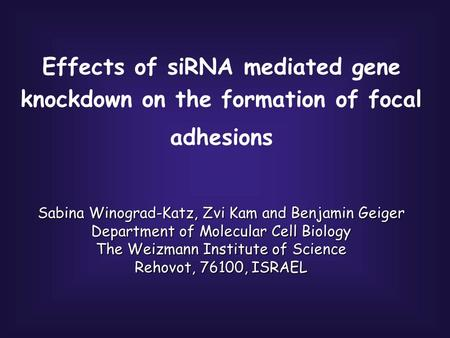 Effects of siRNA mediated gene knockdown on the formation of focal adhesions Sabina Winograd-Katz, Zvi Kam and Benjamin Geiger Department of Molecular.