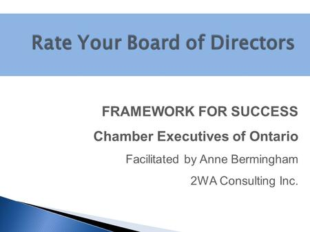 FRAMEWORK FOR SUCCESS Chamber Executives of Ontario Facilitated by Anne Bermingham 2WA Consulting Inc.
