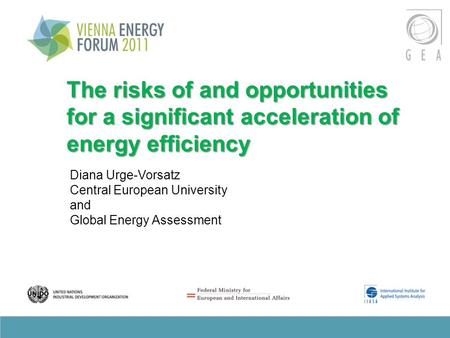 The risks of and opportunities for a significant acceleration of energy efficiency Diana Urge-Vorsatz Central European University and Global Energy Assessment.