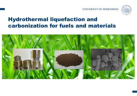Content: Hydrothermal conversion: - overview - carbonization - liquefaction chemicals Conclusion Feedstock: