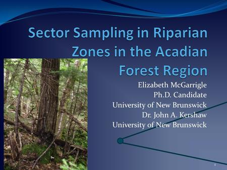 1 Elizabeth McGarrigle Ph.D. Candidate University of New Brunswick Dr. John A. Kershaw University of New Brunswick.