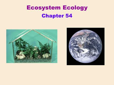 "Chapter 54 Ecosystem Ecology. From a small ""closed system"" to the biosphere Ecosystem – all the organisms living in a community, plus all the abiotic."
